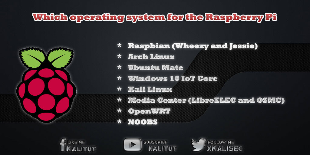 What is the Operating System (OS) of the Raspberry Pi?