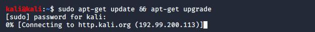 kali linux install vmware tools