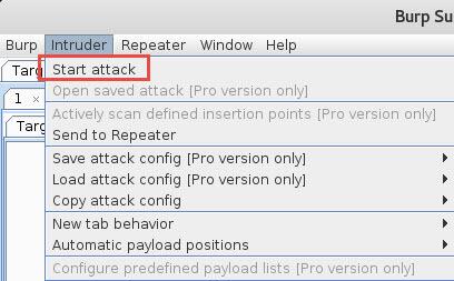 Burp Suite start attack