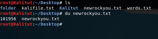 du linux command